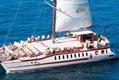 SuperCat Catamarano avvistare Delfini Balene